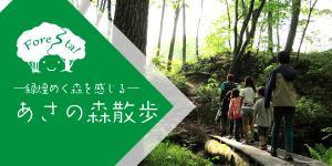 あさの森散歩ー緑煌めく森を感じるー