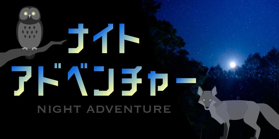よるの森散歩ー森が語る夜の秘密ー
