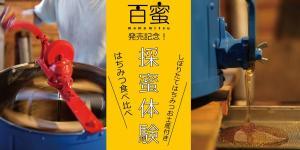 ハチミツSHOP オープン記念!採蜜体験